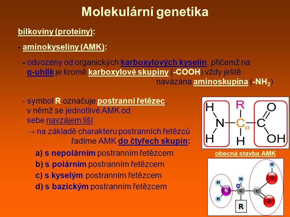 bílkoviny (proteiny): - aminokyseliny (AMK): - odvozeny od organických karboxylových kyselin, přičemž na α-uhlík je kromě karboxylové skupiny (-COOH)