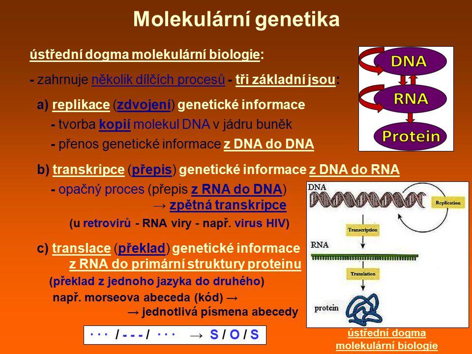 Molekulární genetika ústřední dogma molekulární biologie: - zahrnuje několik dílčích procesů - tři základní jsou: a) replikace (zdvojení) genetické informace - tvorba kopií molekul DNA v jádru buněk - přenos genetické informace z DNA do DNA b) transkripce (přepis) genetické informace z DNA do RNA - opačný proces (přepis z RNA do DNA) → zpětná transkripce (u retrovirů - RNA viry - např.