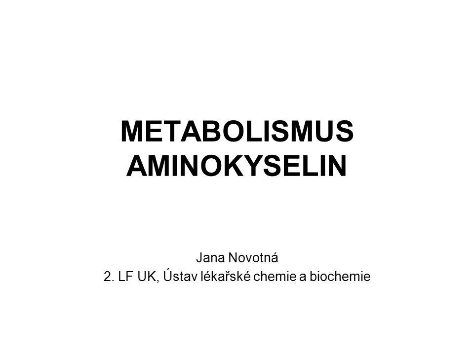 METABOLISMUS AMINOKYSELIN Jana Novotná 2. LF UK, Ústav lékařské chemie a biochemie