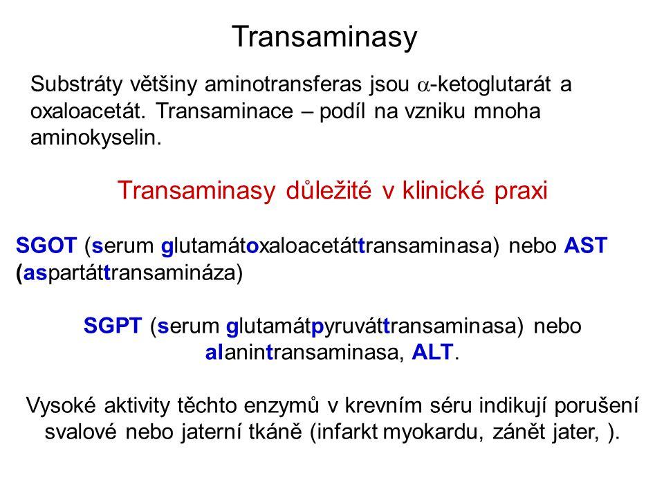 Transaminasy důležité v klinické praxi SGOT (serum glutamátoxaloacetáttransaminasa) nebo AST (aspartáttransamináza) SGPT (serum glutamátpyruváttransaminasa) nebo alanintransaminasa, ALT.