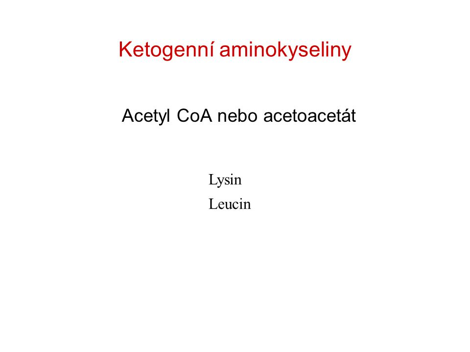 Ketogenní aminokyseliny Acetyl CoA nebo acetoacetát Lysin Leucin