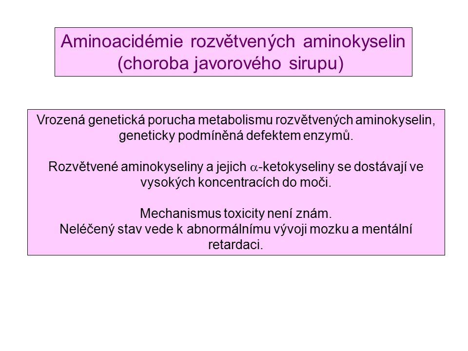 Aminoacidémie rozvětvených aminokyselin (choroba javorového sirupu) Vrozená genetická porucha metabolismu rozvětvených aminokyselin, geneticky podmíněná defektem enzymů.