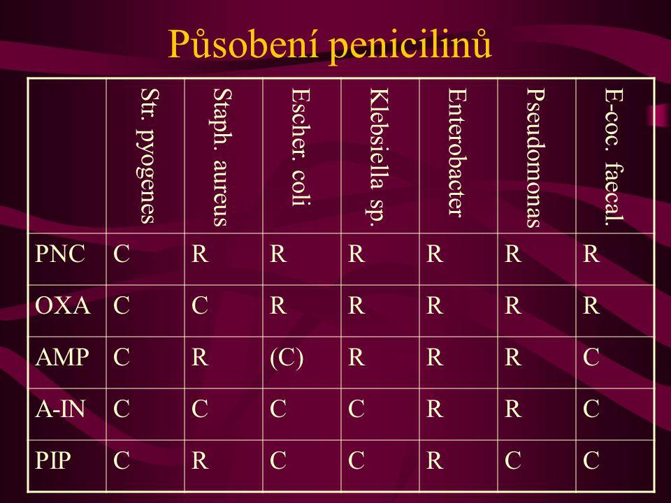 Působení penicilinů PNCCRRRRRR OXACCRRRRR AMPCR(C)RRRC A-INCCCCRRC PIPCRCCRCC Str. pyogenesStaph. aureusEscher. coliKlebsiella sp.EnterobacterPseudomo