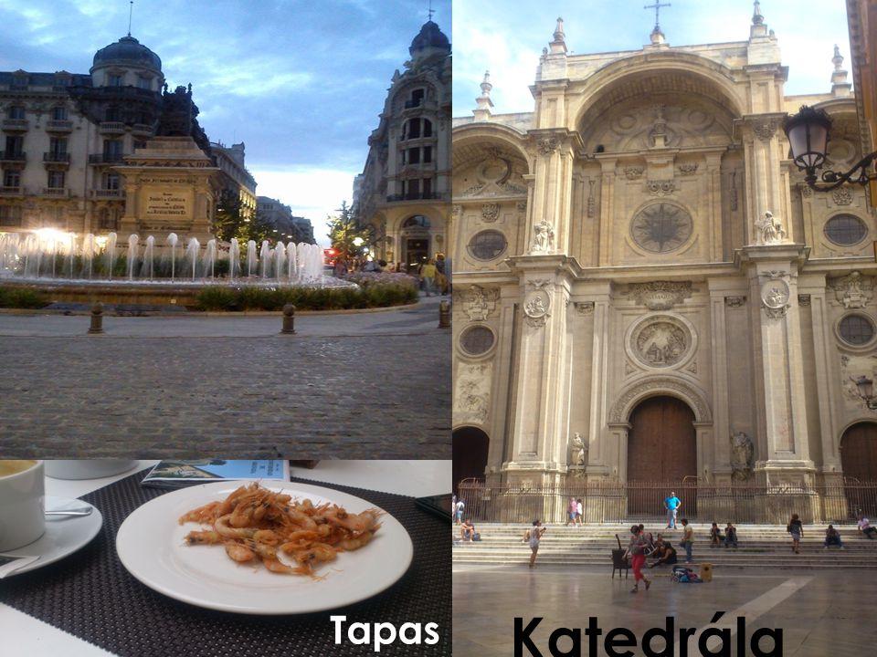Katedrála Tapas