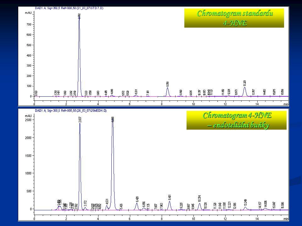18 Chromatogram standardu 4-HNE Chromatogram 4-HNE – endoteliální buňky