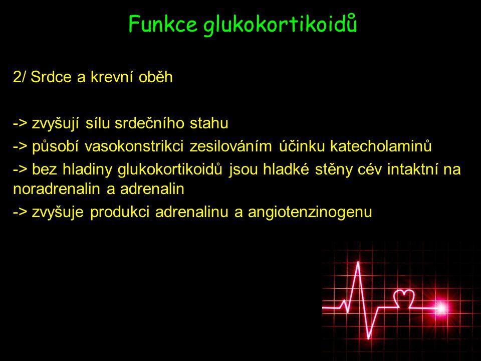 Funkce glukokortikoidů 2/ Srdce a krevní oběh -> zvyšují sílu srdečního stahu -> působí vasokonstrikci zesilováním účinku katecholaminů -> bez hladiny glukokortikoidů jsou hladké stěny cév intaktní na noradrenalin a adrenalin -> zvyšuje produkci adrenalinu a angiotenzinogenu