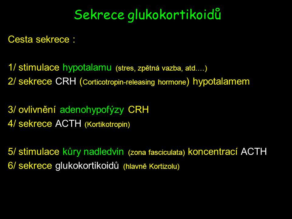 Sekrece glukokortikoidů Cesta sekrece : 1/ stimulace hypotalamu (stres, zpětná vazba, atd.…) 2/ sekrece CRH ( Corticotropin-releasing hormone ) hypotalamem 3/ ovlivnění adenohypofýzy CRH 4/ sekrece ACTH (Kortikotropin) 5/ stimulace kůry nadledvin (zona fasciculata) koncentrací ACTH 6/ sekrece glukokortikoidů (hlavně Kortizolu)