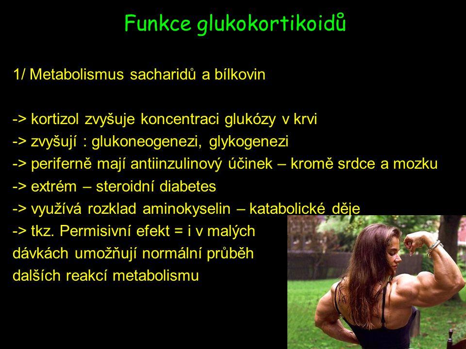 Funkce glukokortikoidů 1/ Metabolismus sacharidů a bílkovin -> kortizol zvyšuje koncentraci glukózy v krvi -> zvyšují : glukoneogenezi, glykogenezi -> periferně mají antiinzulinový účinek – kromě srdce a mozku -> extrém – steroidní diabetes -> využívá rozklad aminokyselin – katabolické děje -> tkz.