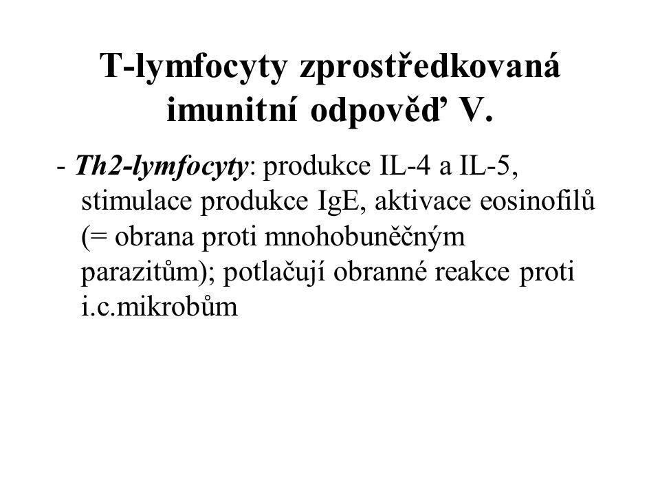 T-lymfocyty zprostředkovaná imunitní odpověď V. - Th2-lymfocyty: produkce IL-4 a IL-5, stimulace produkce IgE, aktivace eosinofilů (= obrana proti mno