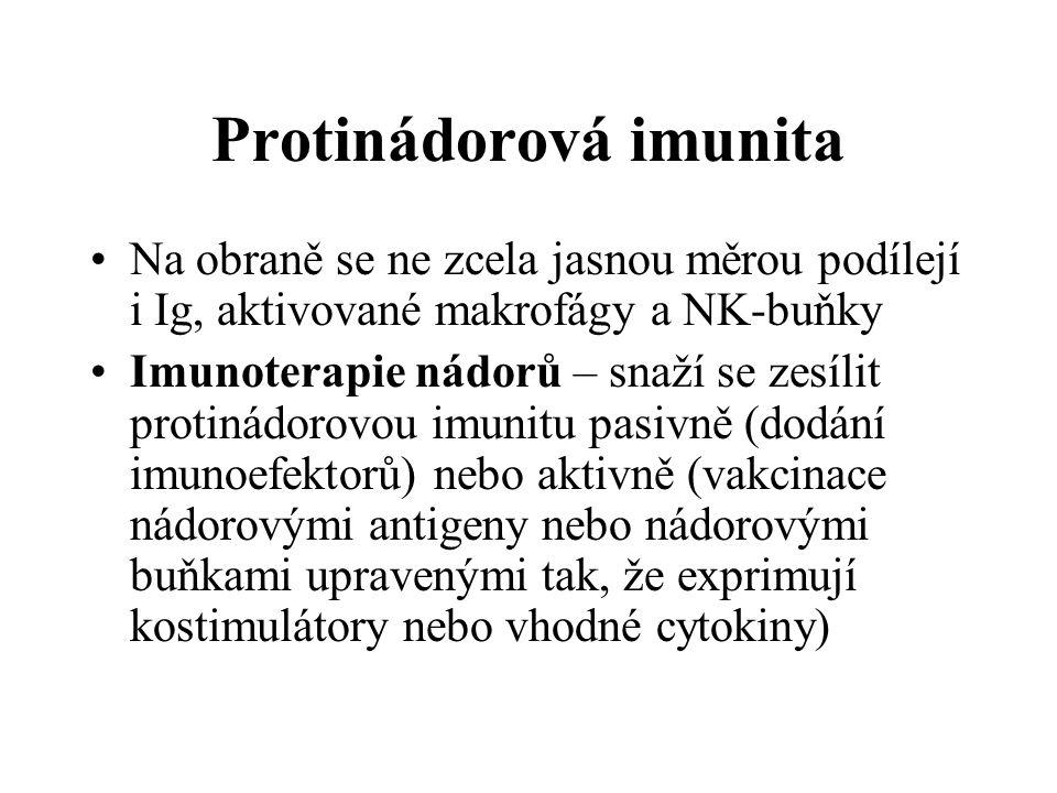 Protinádorová imunita Na obraně se ne zcela jasnou měrou podílejí i Ig, aktivované makrofágy a NK-buňky Imunoterapie nádorů – snaží se zesílit protinádorovou imunitu pasivně (dodání imunoefektorů) nebo aktivně (vakcinace nádorovými antigeny nebo nádorovými buňkami upravenými tak, že exprimují kostimulátory nebo vhodné cytokiny)