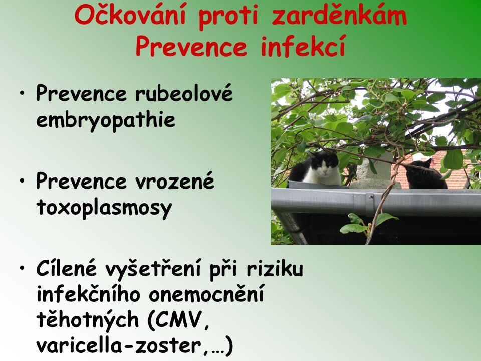 Očkování proti zarděnkám Prevence infekcí Prevence rubeolové embryopathie Prevence vrozené toxoplasmosy Cílené vyšetření při riziku infekčního onemocnění těhotných (CMV, varicella-zoster,…)