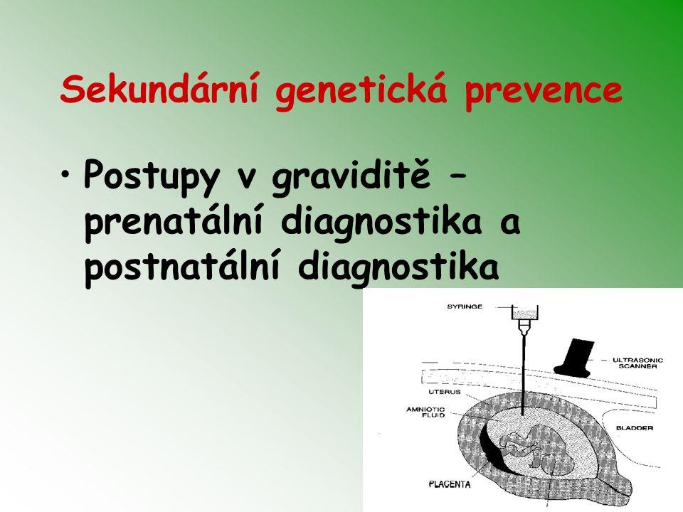 Sekundární genetická prevence Postupy v graviditě – prenatální diagnostika a postnatální diagnostika