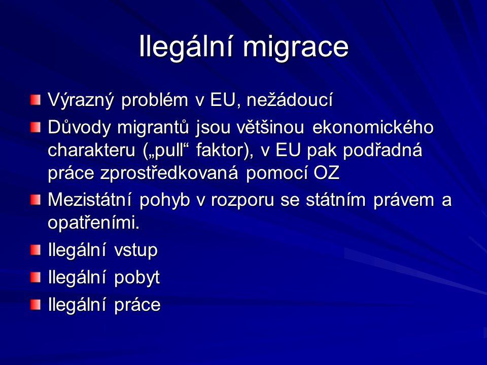 """Ilegální migrace Výrazný problém v EU, nežádoucí Důvody migrantů jsou většinou ekonomického charakteru (""""pull"""" faktor), v EU pak podřadná práce zprost"""