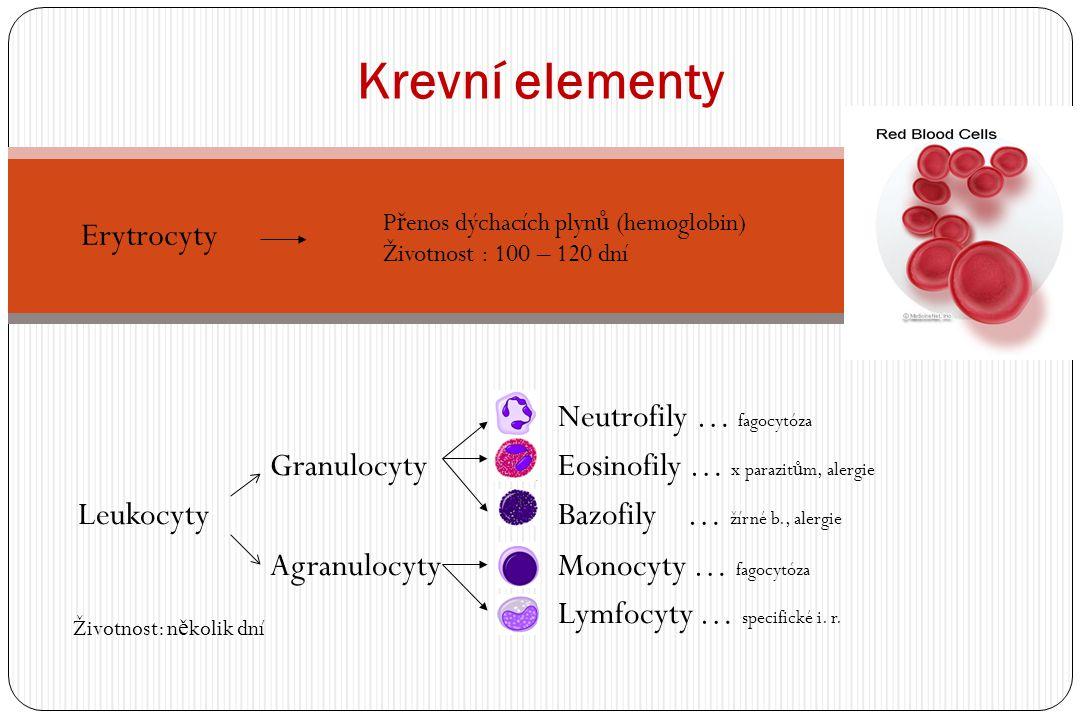 Neutrofily … fagocytóza Granulocyty Eosinofily … x parazit ů m, alergie LeukocytyBazofily … žírné b., alergie Agranulocyty Monocyty … fagocytóza Lymfocyty … specifické i.