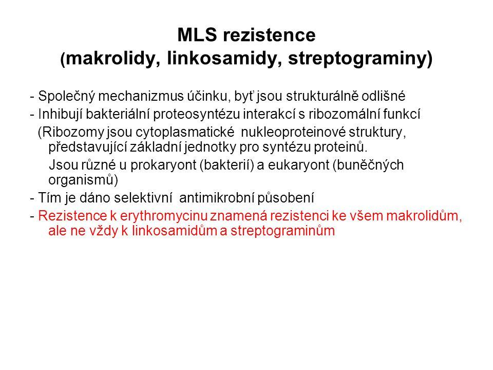 MLS rezistence ( makrolidy, linkosamidy, streptograminy) - Společný mechanizmus účinku, byť jsou strukturálně odlišné - Inhibují bakteriální proteosyn