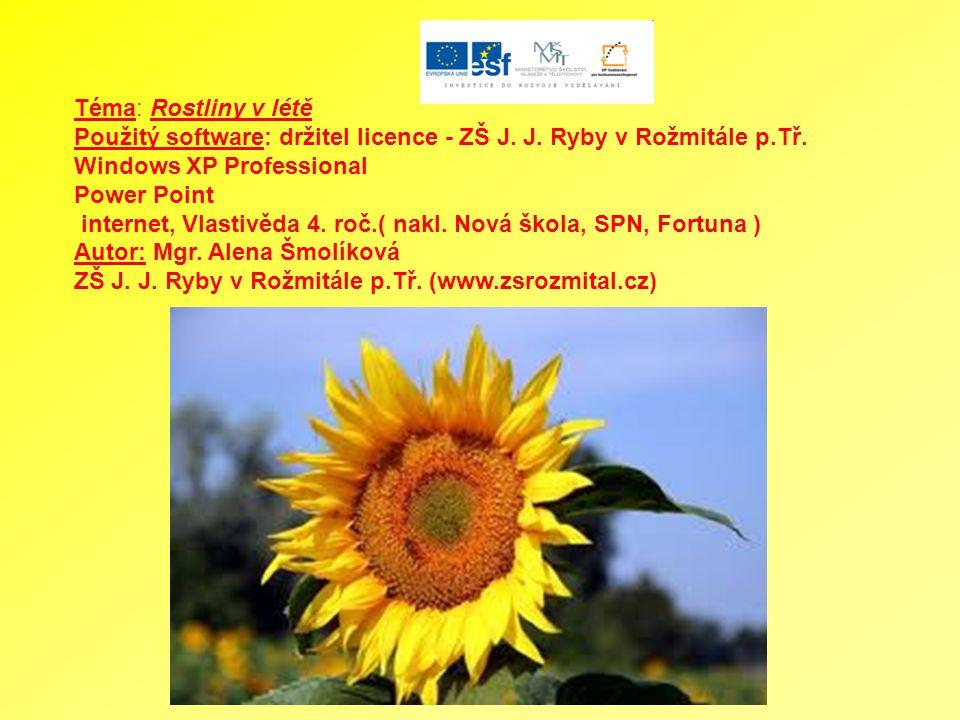 Téma: Rostliny v létě Použitý software: držitel licence - ZŠ J.