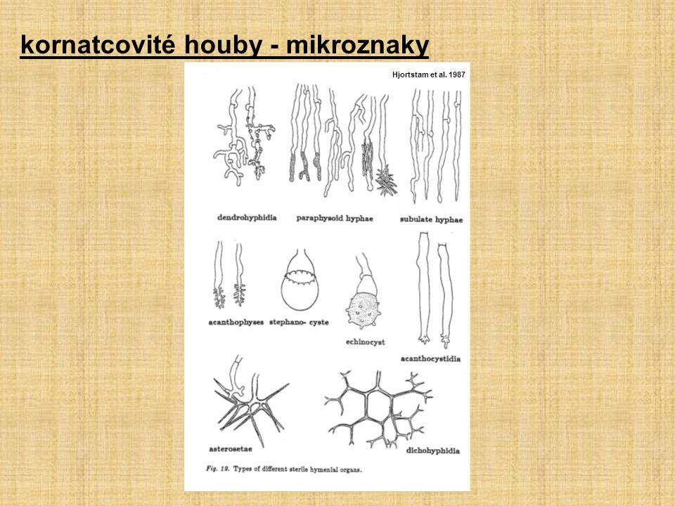 kornatcovité houby - mikroznaky Hjortstam et al. 1987