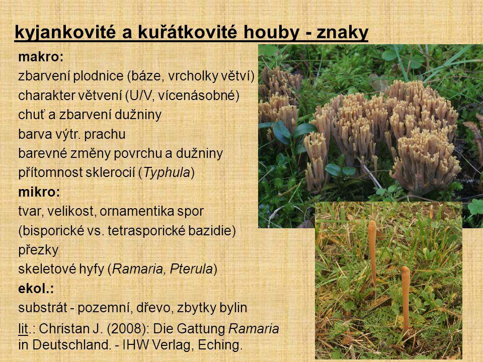 kyjankovité a kuřátkovité houby - znaky makro: zbarvení plodnice (báze, vrcholky větví) charakter větvení (U/V, vícenásobné) chuť a zbarvení dužniny b