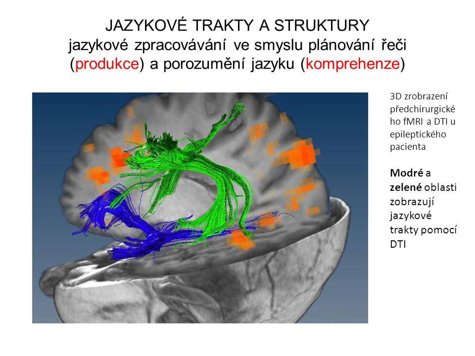 JAZYKOVÉ TRAKTY A STRUKTURY jazykové zpracovávání ve smyslu plánování řeči (produkce) a porozumění jazyku (komprehenze) 3D zrobrazení předchirurgické
