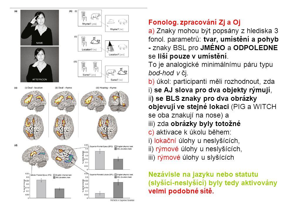 Fonolog. zpracování Zj a Oj a) Znaky mohou být popsány z hlediska 3 fonol. parametrů: tvar, umístění a pohyb - znaky BSL pro JMÉNO a ODPOLEDNE se liší