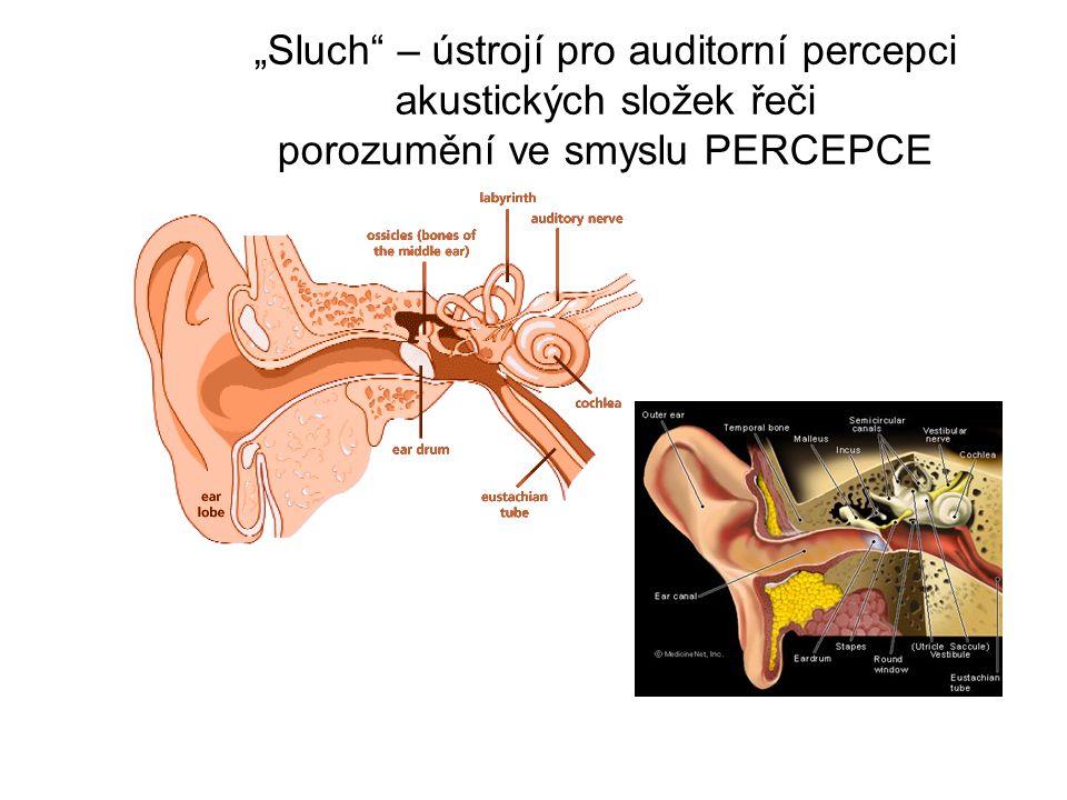 """""""Sluch"""" – ústrojí pro auditorní percepci akustických složek řeči porozumění ve smyslu PERCEPCE"""