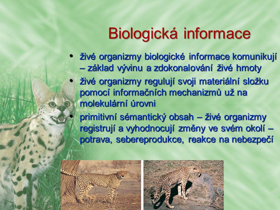 Biosociální informace předávaná negeneticky, souvislou animální tradicípředávaná negeneticky, souvislou animální tradicí informace kumulovaná živočišnými společenstvímiinformace kumulovaná živočišnými společenstvími zárodky lidské kultury hluboko v biologické evolucizárodky lidské kultury hluboko v biologické evoluci biologická x sociální informace?biologická x sociální informace?