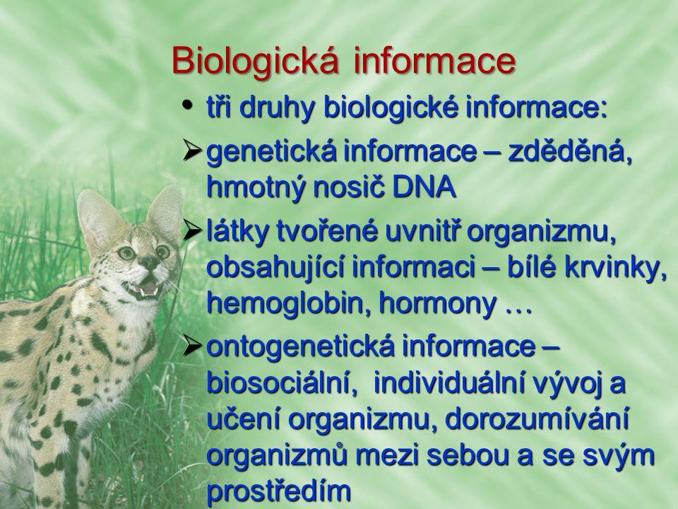 Biologická informace tři druhy biologické informace: tři druhy biologické informace:  genetická informace – zděděná, hmotný nosič DNA  látky tvořené uvnitř organizmu, obsahující informaci – bílé krvinky, hemoglobin, hormony …  ontogenetická informace – biosociální, individuální vývoj a učení organizmu, dorozumívání organizmů mezi sebou a se svým prostředím