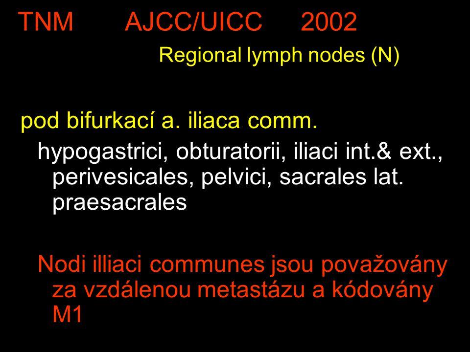TNM AJCC/UICC 2002 Regional lymph nodes (N) pod bifurkací a. iliaca comm. hypogastrici, obturatorii, iliaci int.& ext., perivesicales, pelvici, sacral