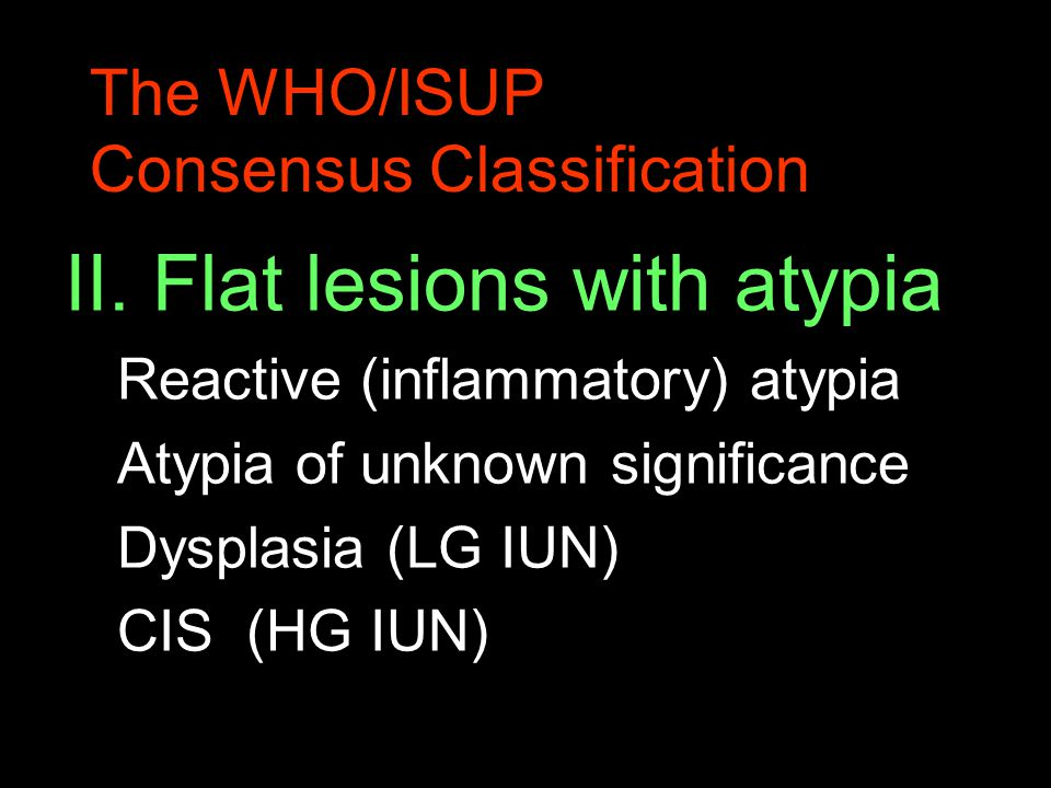 The WHO/ISUP Consensus Classification II. Flat lesions with atypia Reactive (inflammatory) atypia Atypia of unknown significance Dysplasia (LG IUN) CI