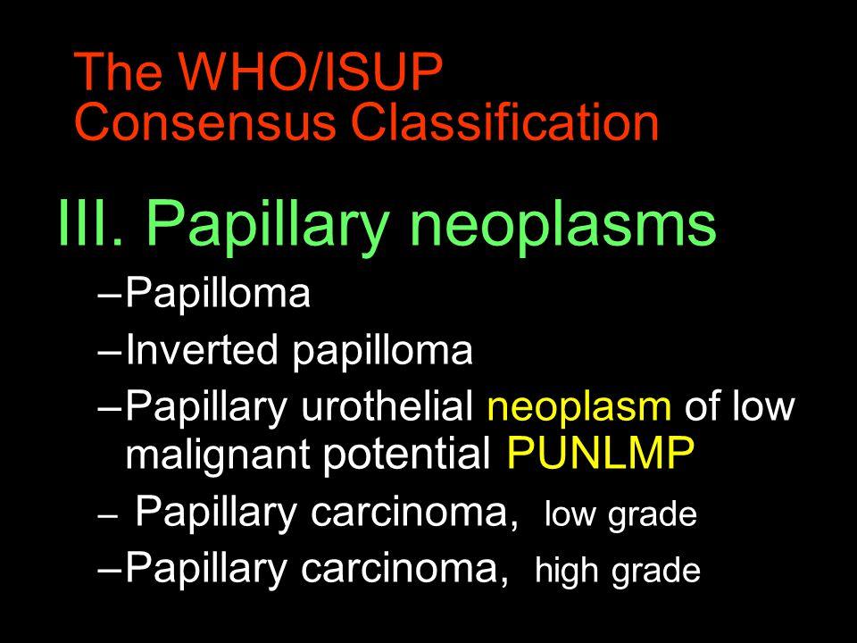 The WHO/ISUP Consensus Classification III.