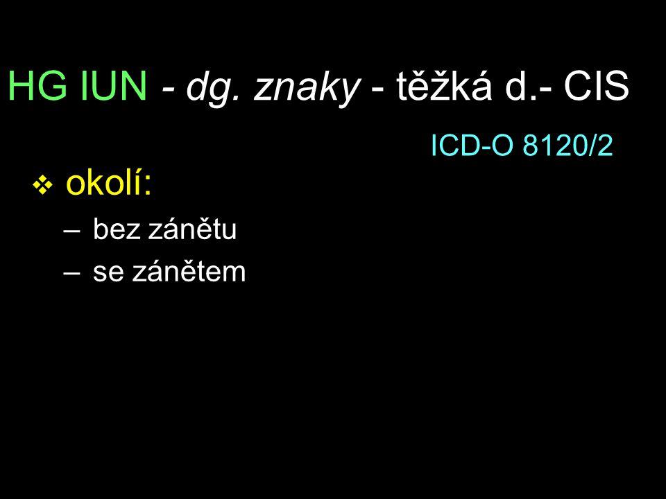 HG IUN - dg. znaky - těžká d.- CIS v okolí: – bez zánětu – se zánětem ICD-O 8120/2