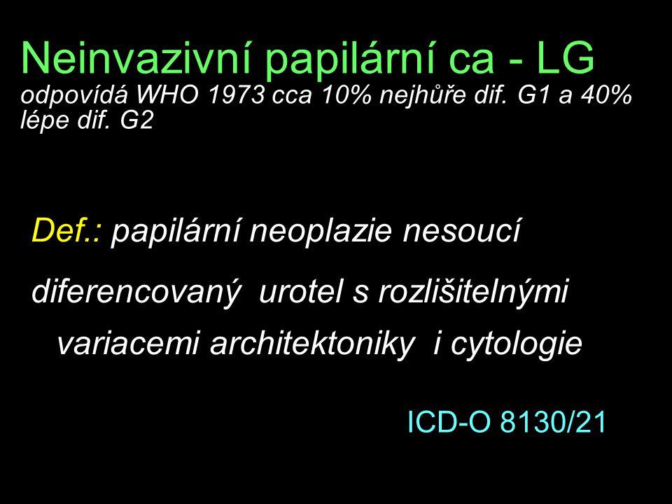 Neinvazivní papilární ca - LG odpovídá WHO 1973 cca 10% nejhůře dif. G1 a 40% lépe dif. G2 Def.: papilární neoplazie nesoucí diferencovaný urotel s ro