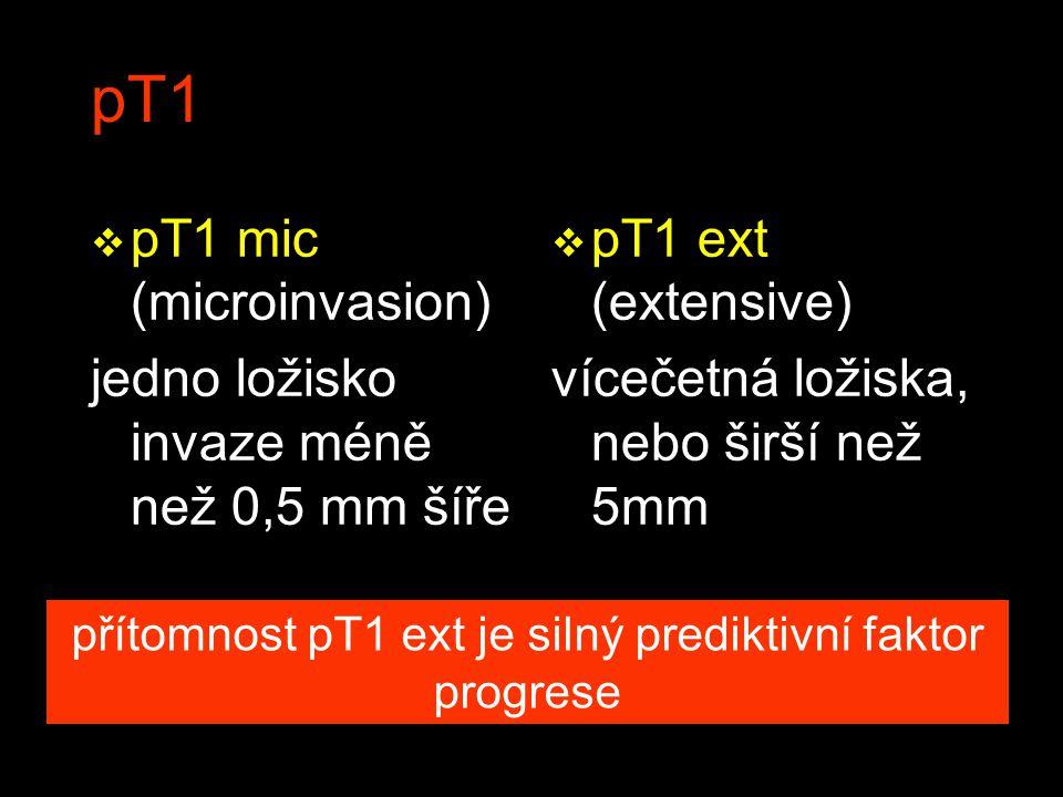 pT1 v pT1 mic (microinvasion) jedno ložisko invaze méně než 0,5 mm šíře v pT1 ext (extensive) vícečetná ložiska, nebo širší než 5mm přítomnost pT1 ext je silný prediktivní faktor progrese