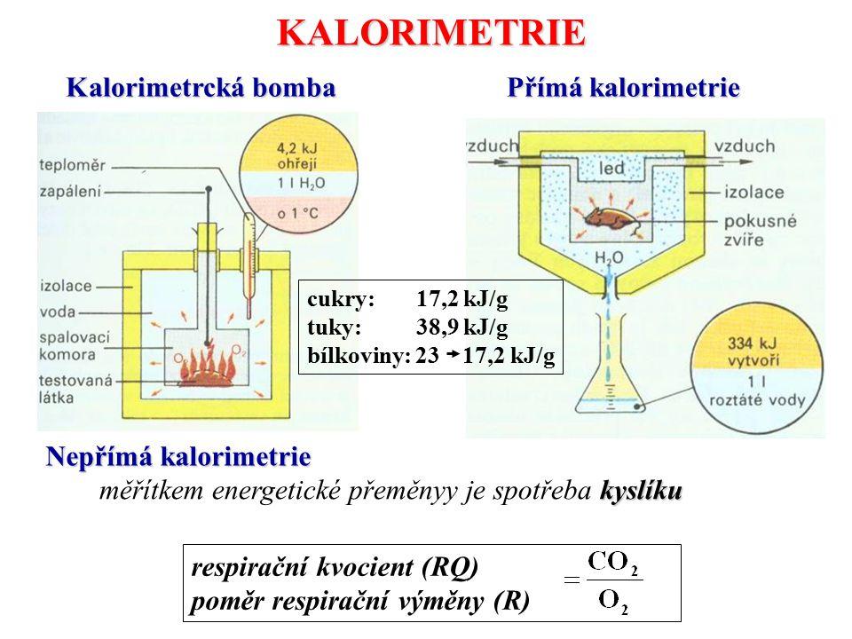 KALORIMETRIE Kalorimetrcká bomba Přímá kalorimetrie cukry: 17,2 kJ/g tuky: 38,9 kJ/g bílkoviny: 23 17,2 kJ/g Nepřímá kalorimetrie kyslíku měřítkem ene