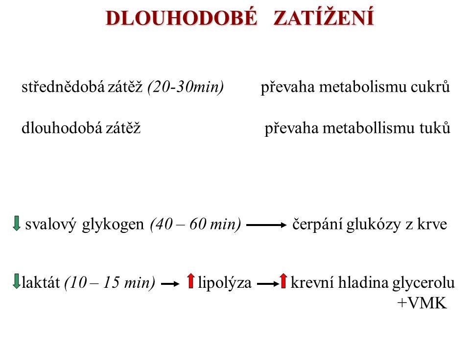 DLOUHODOBÉ ZATÍŽENÍ svalový glykogen (40 – 60 min) čerpání glukózy z krve laktát (10 – 15 min) lipolýza krevní hladina glycerolu +VMK střednědobá zátě