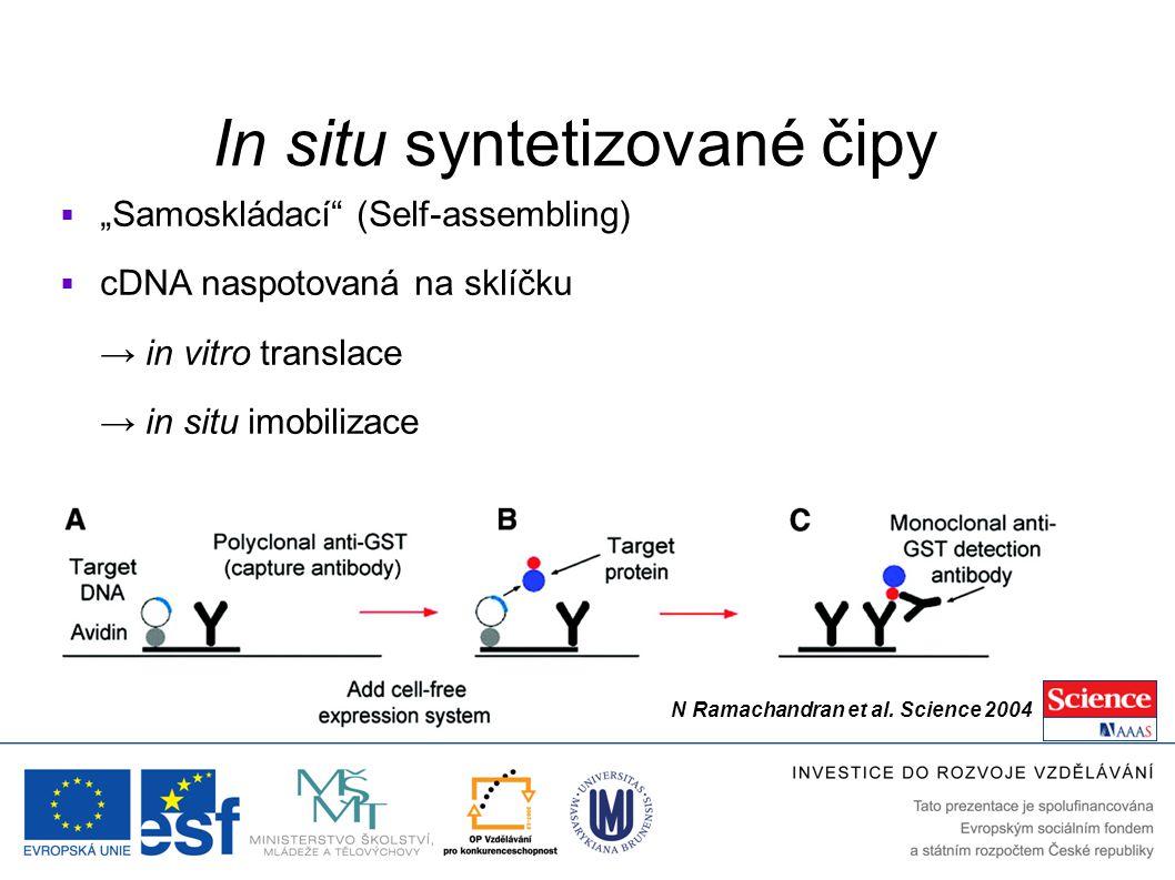 """In situ syntetizované čipy  """"Samoskládací"""" (Self-assembling)  cDNA naspotovaná na sklíčku → in vitro translace → in situ imobilizace N Ramachandran"""