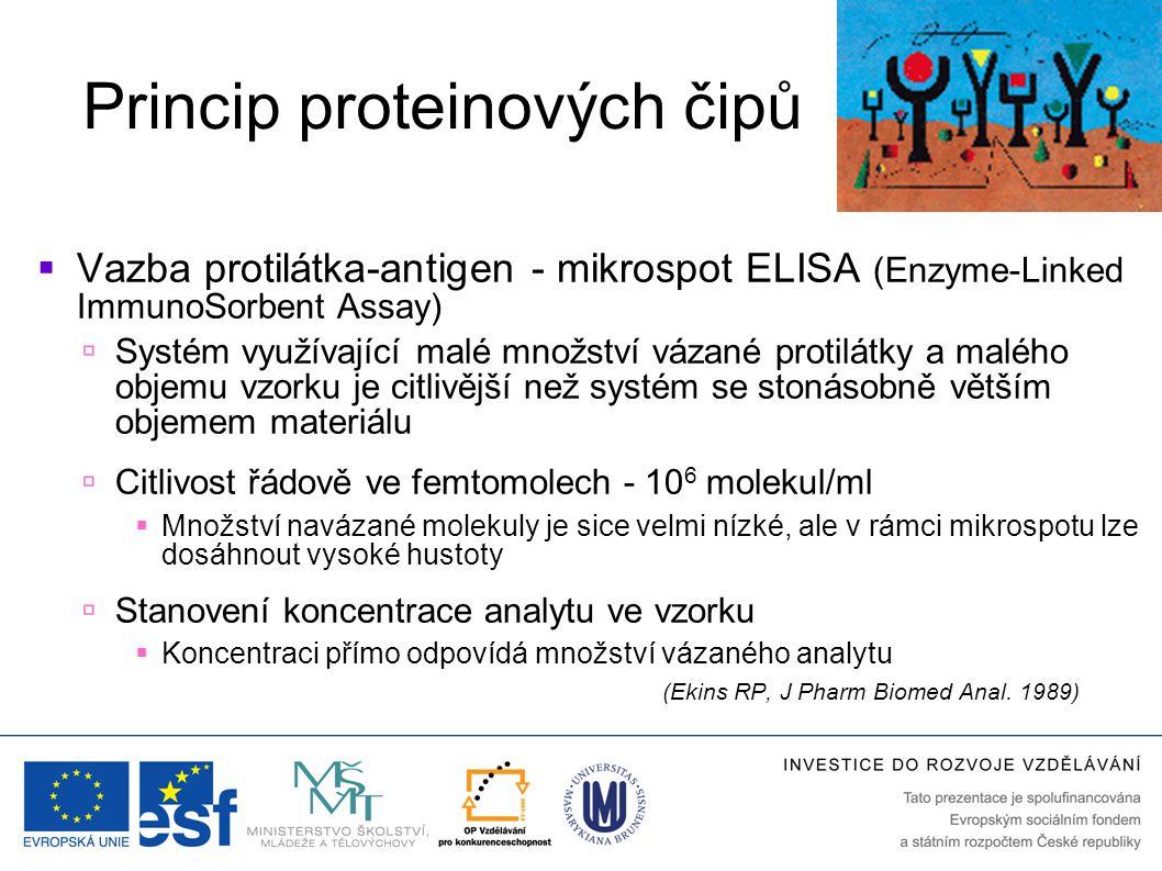 Princip proteinových čipů  Vazba protilátka-antigen - mikrospot ELISA (Enzyme-Linked ImmunoSorbent Assay)  Systém využívající malé množství vázané protilátky a malého objemu vzorku je citlivější než systém se stonásobně větším objemem materiálu  Citlivost řádově ve femtomolech - 10 6 molekul/ml  Množství navázané molekuly je sice velmi nízké, ale v rámci mikrospotu lze dosáhnout vysoké hustoty  Stanovení koncentrace analytu ve vzorku  Koncentraci přímo odpovídá množství vázaného analytu (Ekins RP, J Pharm Biomed Anal.