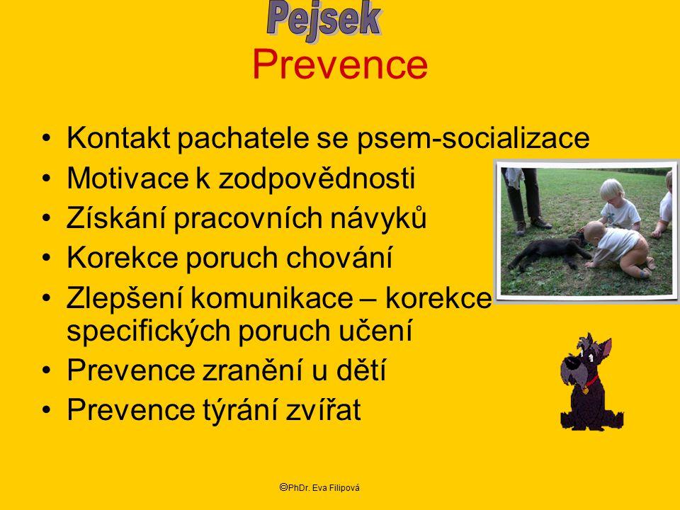 Prevence Kontakt pachatele se psem-socializace Motivace k zodpovědnosti Získání pracovních návyků Korekce poruch chování Zlepšení komunikace – korekce