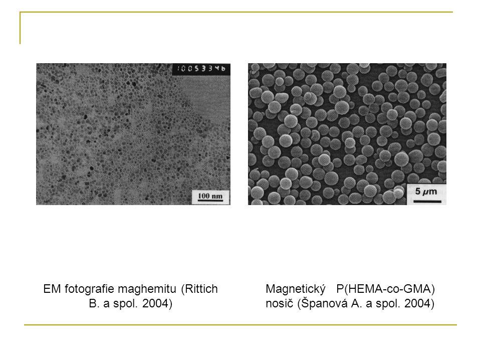 EM fotografie maghemitu (Rittich B. a spol. 2004) Magnetický P(HEMA-co-GMA) nosič (Španová A. a spol. 2004)