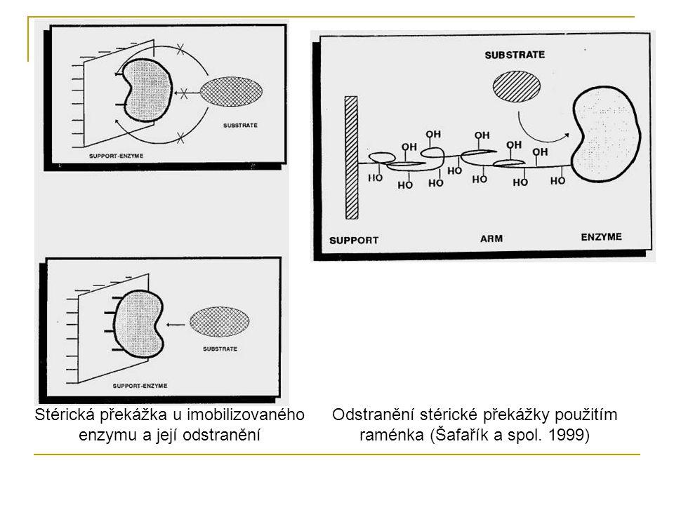 Odstranění stérické překážky použitím raménka (Šafařík a spol. 1999) Stérická překážka u imobilizovaného enzymu a její odstranění