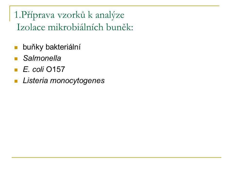1.Příprava vzorků k analýze Izolace mikrobiálních buněk: buňky bakteriální Salmonella E. coli O157 Listeria monocytogenes