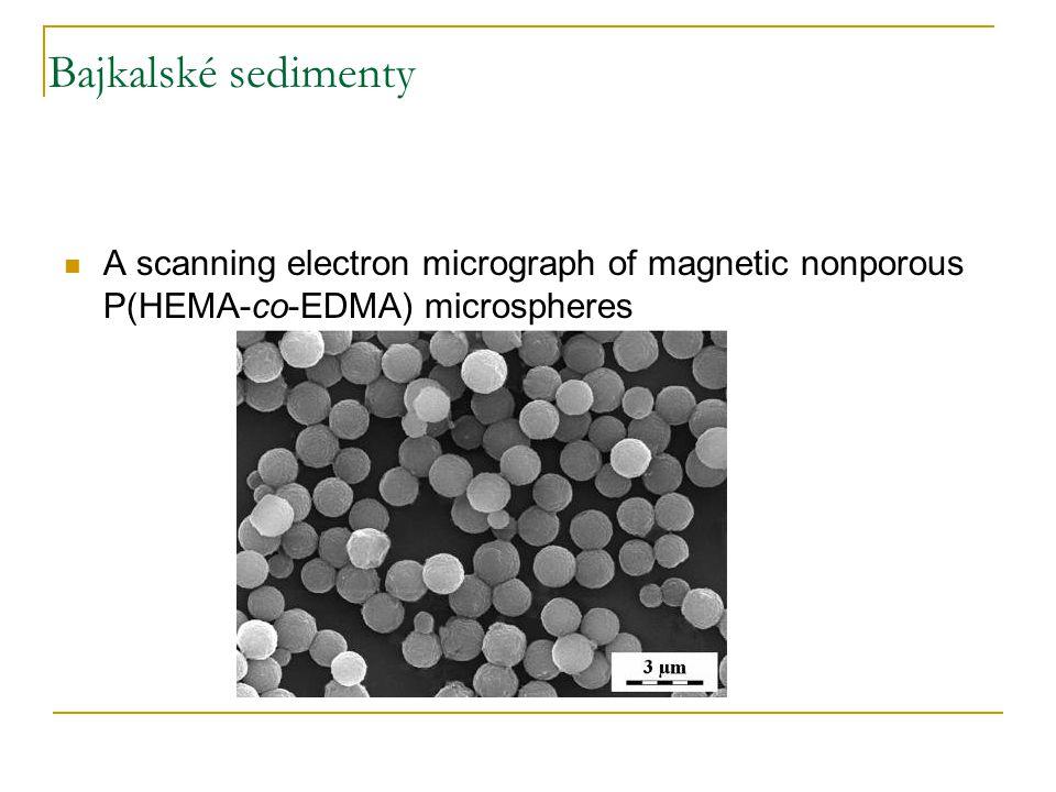 Bajkalské sedimenty A scanning electron micrograph of magnetic nonporous P(HEMA-co-EDMA) microspheres