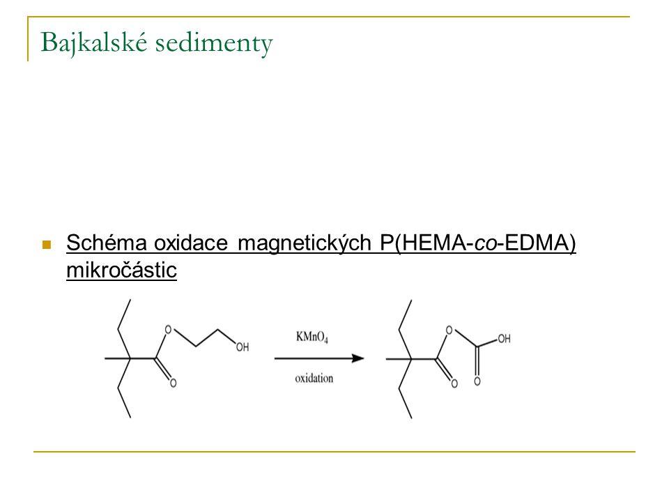 Bajkalské sedimenty Schéma oxidace magnetických P(HEMA-co-EDMA) mikročástic