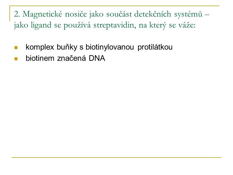 2. Magnetické nosiče jako součást detekčních systémů – jako ligand se používá streptavidin, na který se váže: komplex buňky s biotinylovanou protilátk