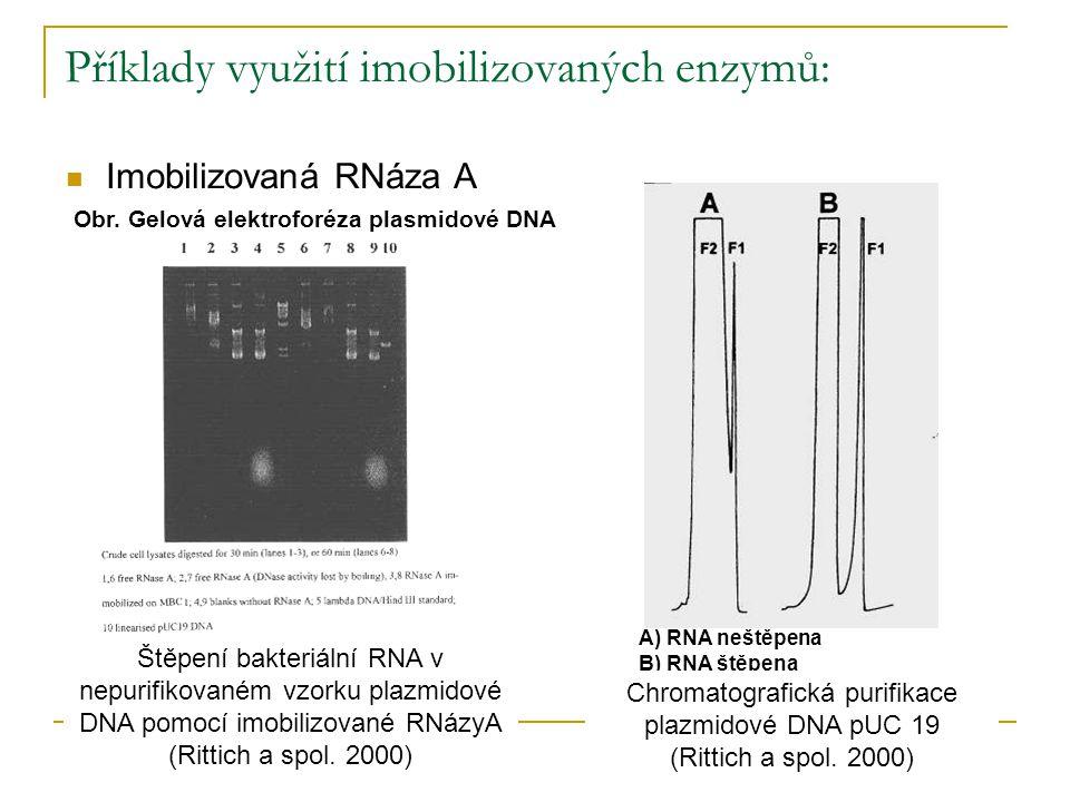 Příklady využití imobilizovaných enzymů: Imobilizovaná RNáza A Obr. Gelová elektroforéza plasmidové DNA Štěpení bakteriální RNA v nepurifikovaném vzor