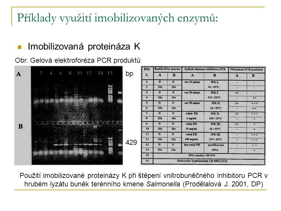 Příklady využití imobilizovaných enzymů: Imobilizovaná proteináza K Obr. Gelová elektroforéza PCR produktů Použití imobilizované proteinázy K při štěp