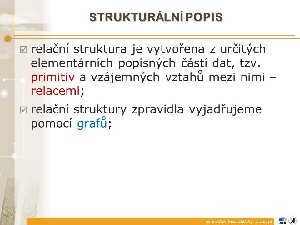 © Institut biostatistiky a analýz STRUKTURÁLNÍ POPIS  relační struktura je vytvořena z určitých elementárních popisných částí dat, tzv. primitiv a vz