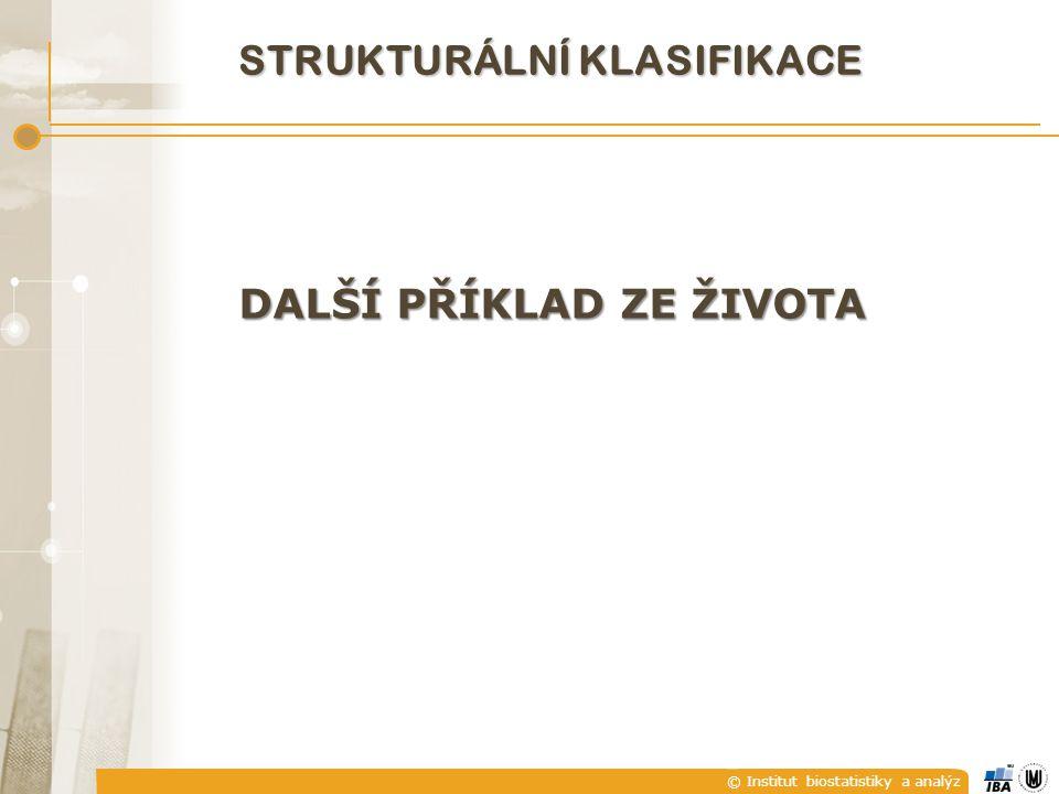 © Institut biostatistiky a analýz STRUKTURÁLNÍ KLASIFIKACE DALŠÍ PŘÍKLAD ZE ŽIVOTA
