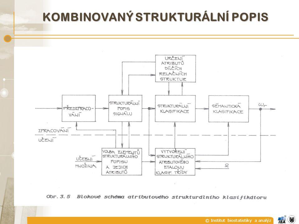 © Institut biostatistiky a analýz KOMBINOVANÝ STRUKTURÁLNÍ POPIS