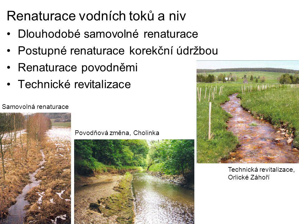 Renaturace vodních toků a niv Dlouhodobé samovolné renaturace Postupné renaturace korekční údržbou Renaturace povodněmi Technické revitalizace Samovolná renaturace Povodňová změna, Cholinka Technická revitalizace, Orlické Záhoří